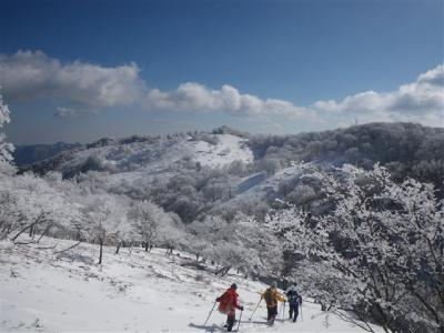 2010-01-17-085.jpg