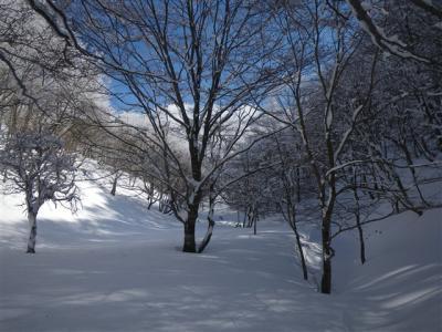 2010-01-17-091.jpg