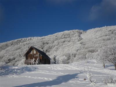 2010-01-17-136.jpg