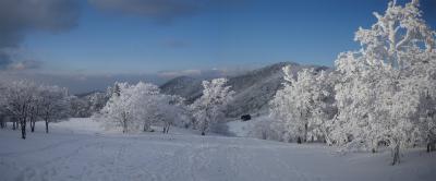 2010-01-17-p4.jpg