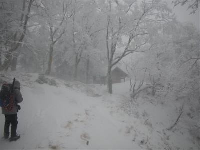 2010-02-06-013.jpg