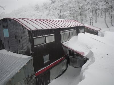 2010-02-06-018.jpg