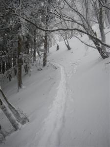 2010-02-06-021.jpg