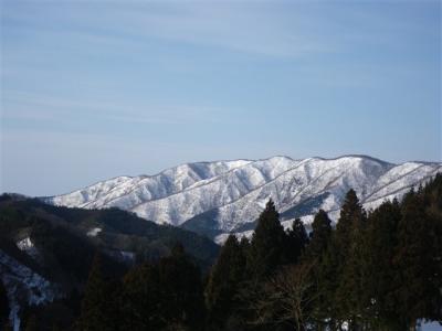 2010-02-14-003.jpg