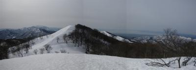 2010-02-14-p5.jpg