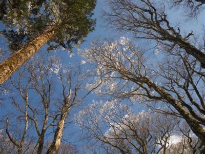 2010-02-21-136.jpg