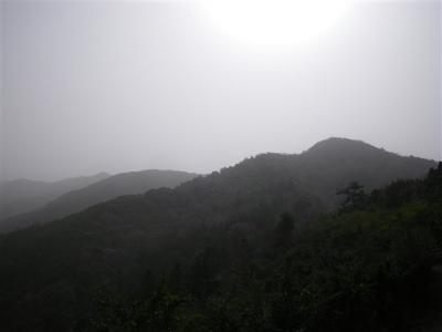 2010-03-21-018.jpg