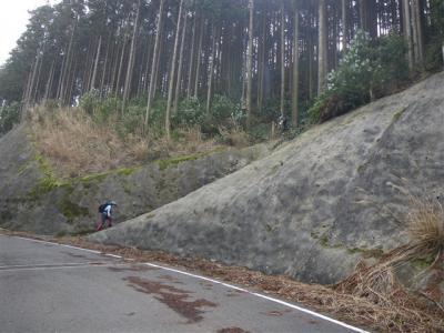2010-03-21-021.jpg