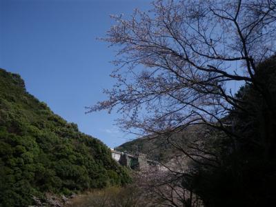 2010-03-21-047.jpg