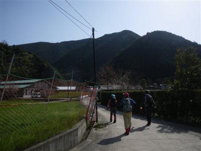 2010-03-21-050.jpg
