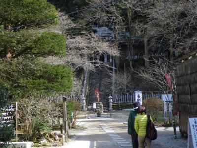 2010-03-28-050.jpg