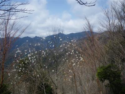 2010-04-11-037.jpg