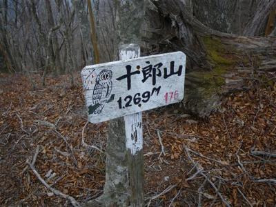 2010-04-11-058.jpg