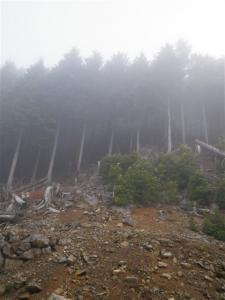 2010-04-18-004.jpg