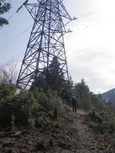 2010-04-29-005.jpg