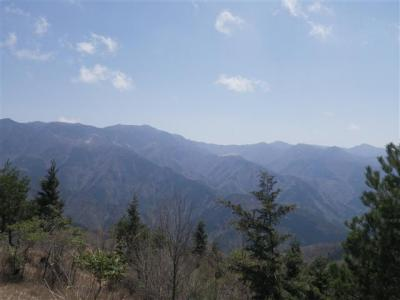 2010-04-29-025.jpg