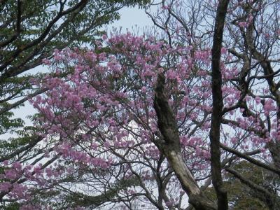 2010-05-02-052.jpg
