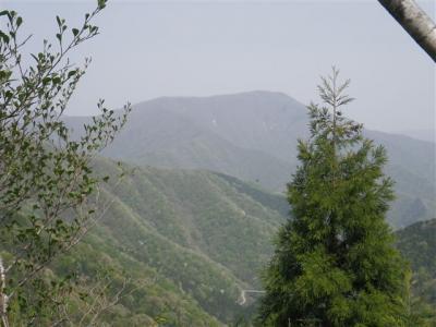 2010-05-04-058.jpg