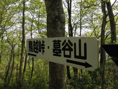 2010-05-05-030.jpg