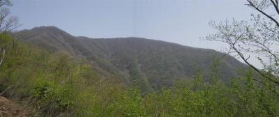 2010-05-05-p.jpg