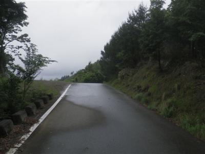 2010-06-27-018.jpg
