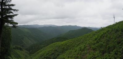2010-06-27-p.jpg