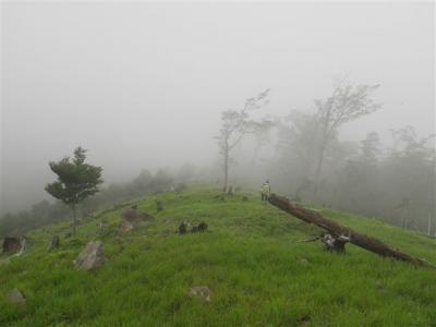 2010-07-04-062.jpg