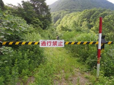 2010-07-18-007.jpg
