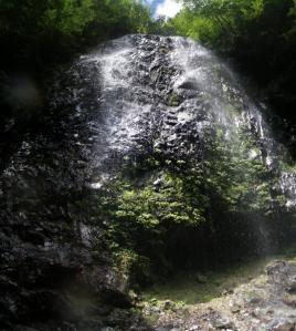 2010-08-29-p5.jpg