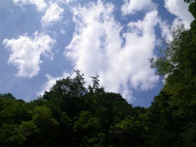 2010-09-12-141.jpg
