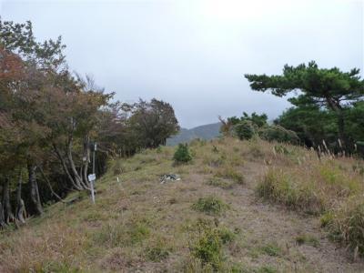 2010-10-24-053.jpg