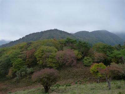 2010-10-24-067.jpg