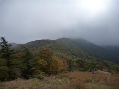 2010-10-24-078.jpg