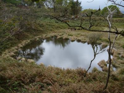 2010-10-24-085.jpg