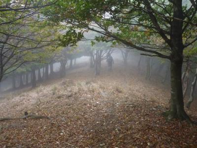 2010-10-24-110.jpg