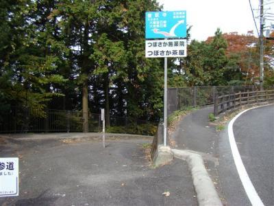 2010-11-13-004.jpg