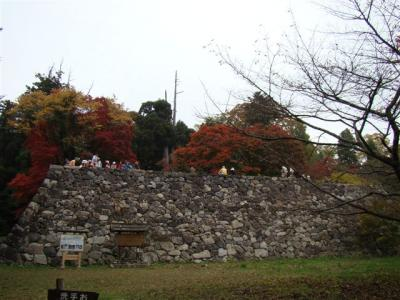 2010-11-13-178.jpg
