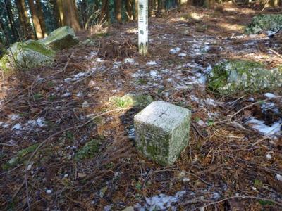 2010-12-30-046.jpg