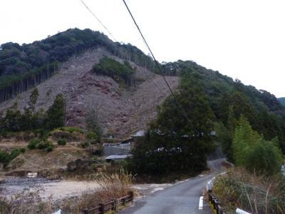 2011-01-03-002.jpg