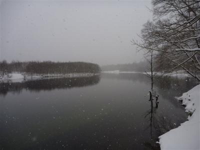 2011-01-09-034.jpg