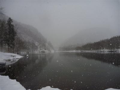 2011-01-09-040.jpg