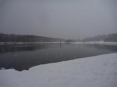 2011-01-09-044.jpg