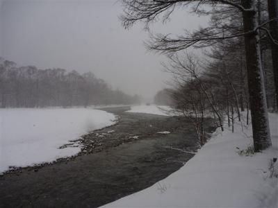 2011-01-09-092.jpg