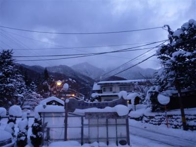 2011-01-10-134.jpg