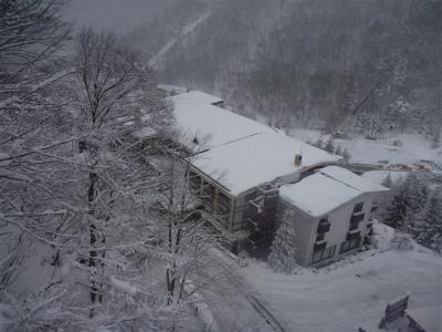 2011-01-10-146.jpg
