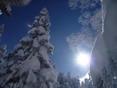 2011-01-10-170.jpg
