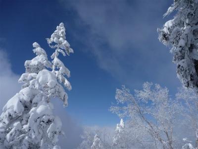 2011-01-10-190.jpg