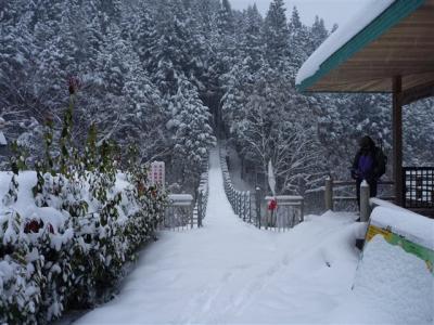 2011-01-16-002.jpg