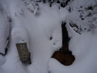 2011-01-16-006.jpg