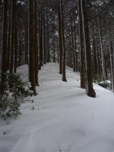 2011-01-16-018.jpg